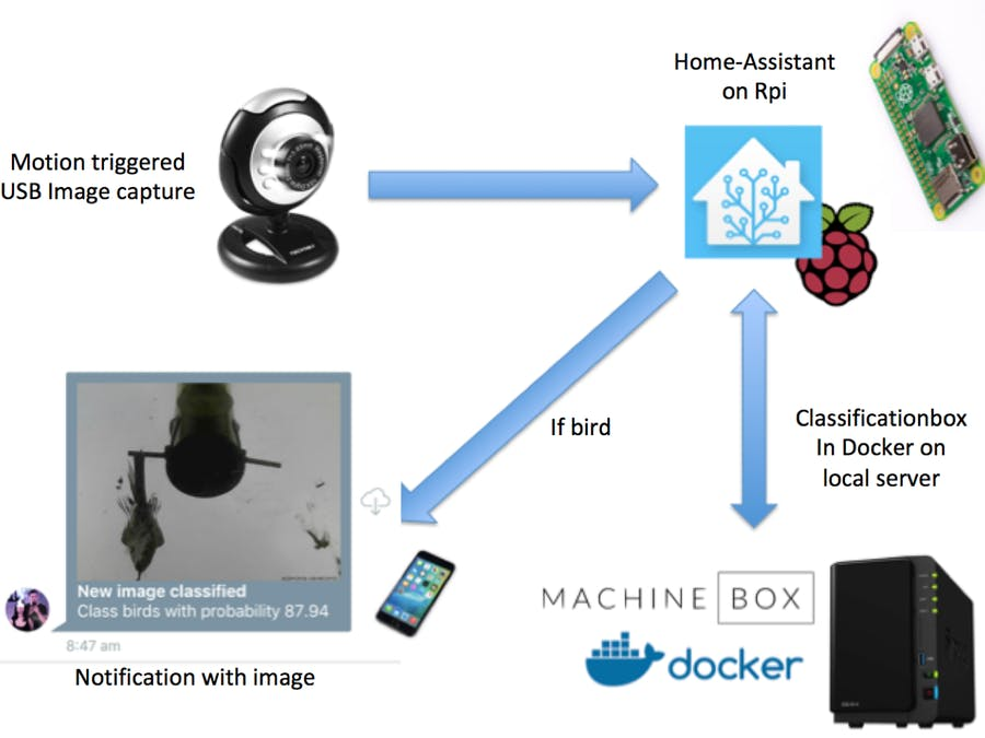 Motion Activated Image Capture and Classification of Birds - Hackster io