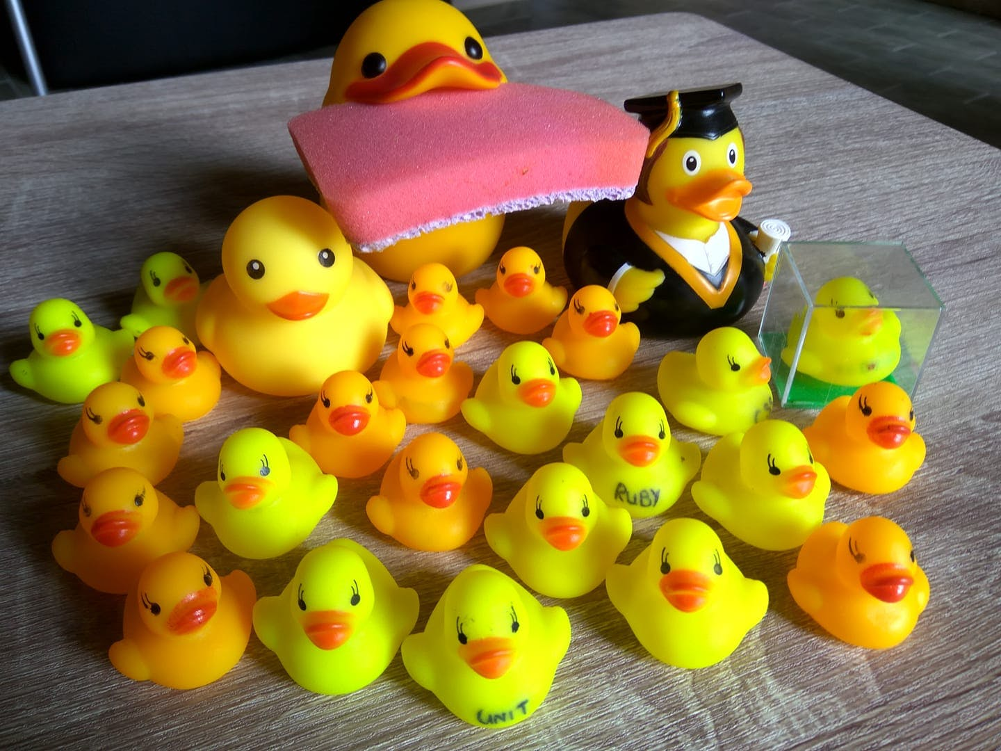 No rubber ducks were harmed during the making of this project