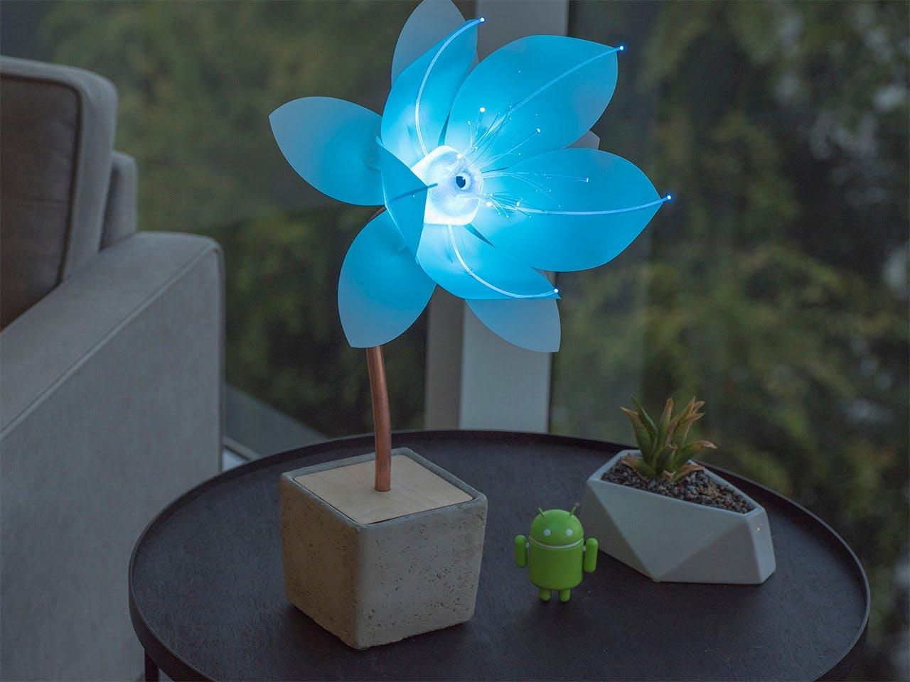 Expression Flower