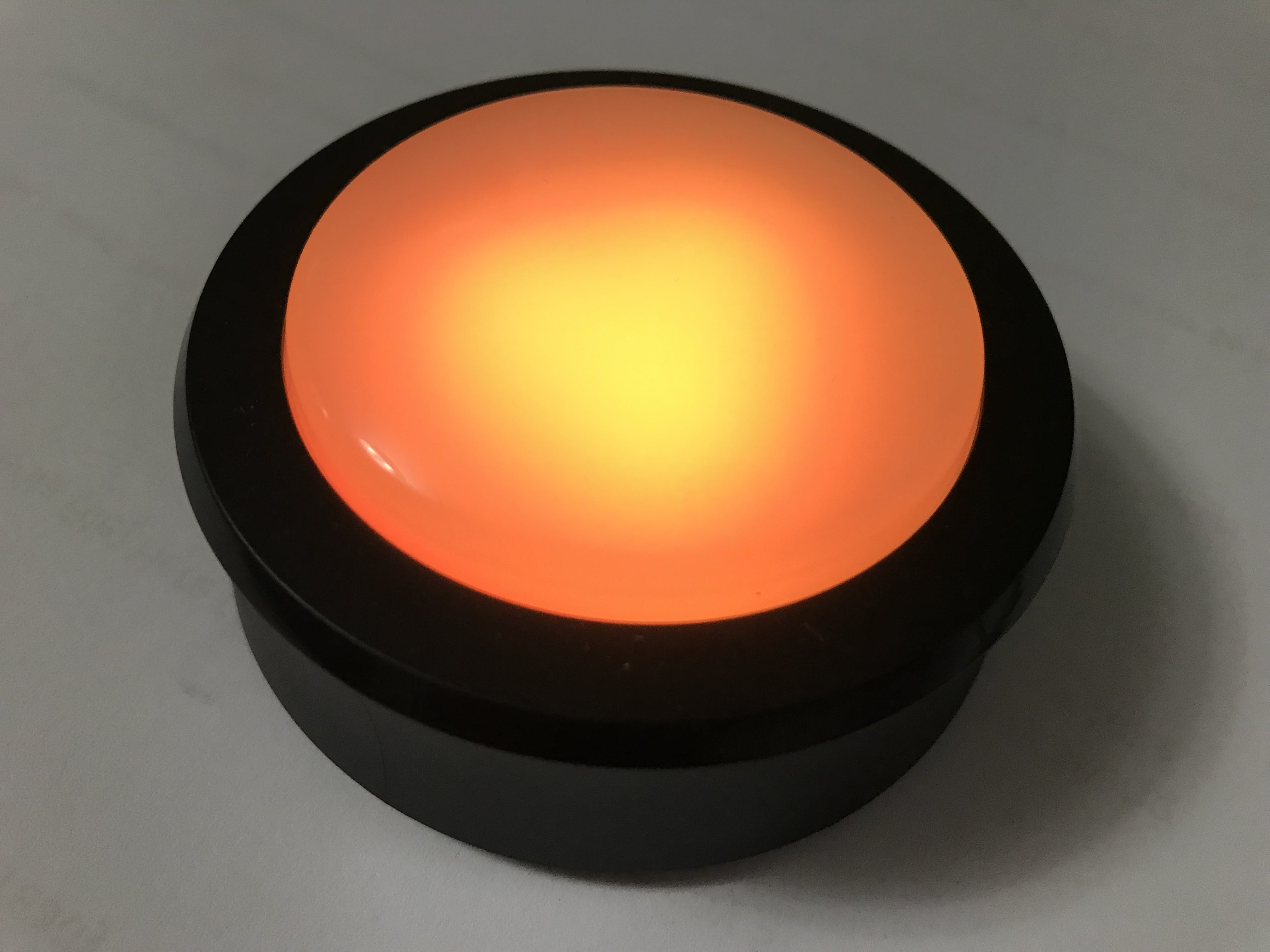Echo Button with lights activated