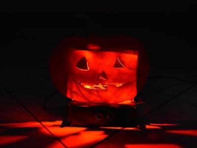 Sensitive Jack-o'-Lantern