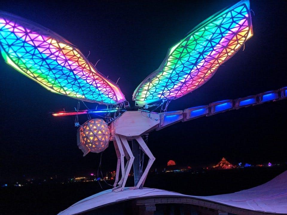 The Dragonfly Wings