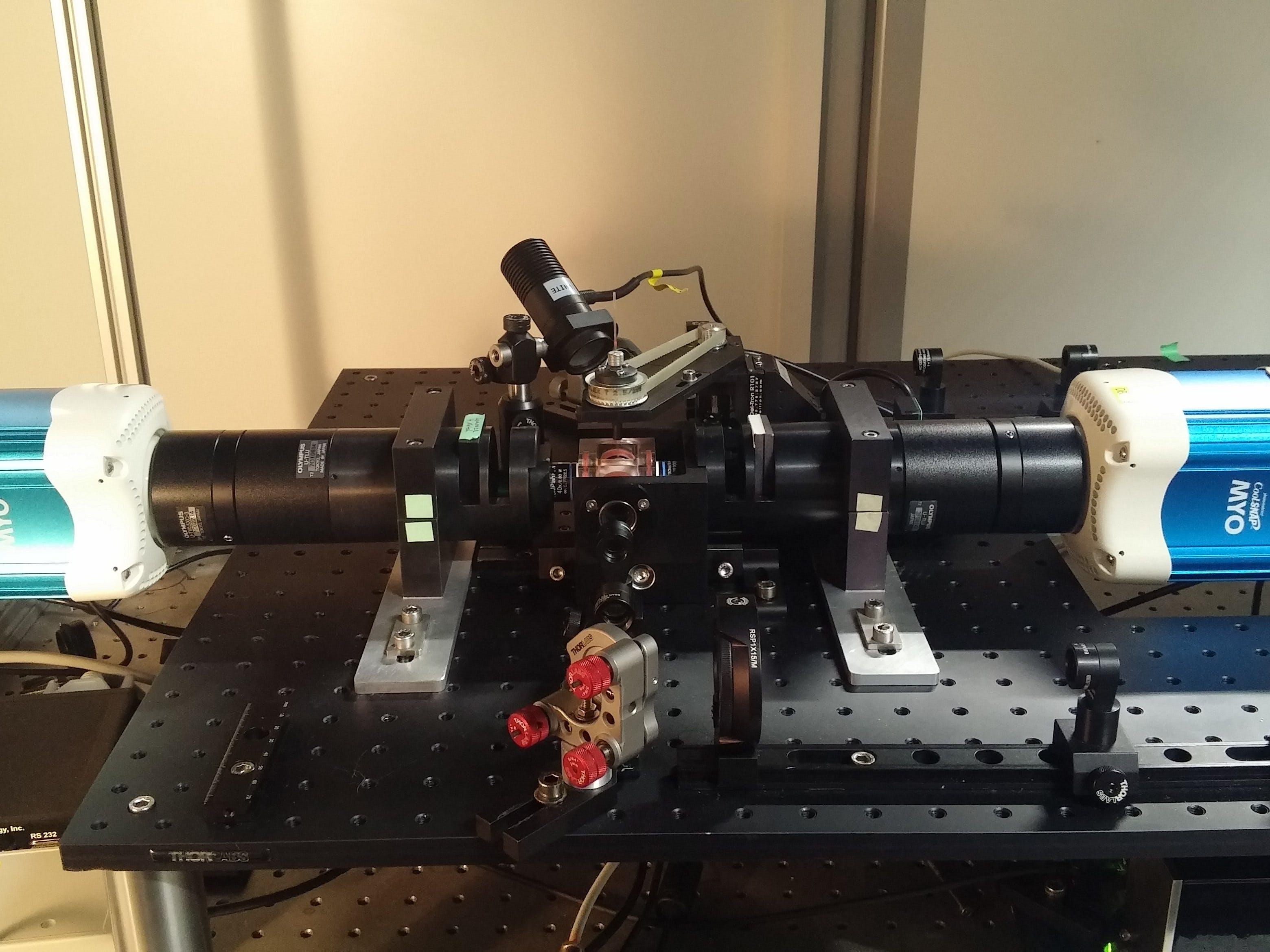 Dual-View Imaging in a Custom-Built Light Sheet Microscope