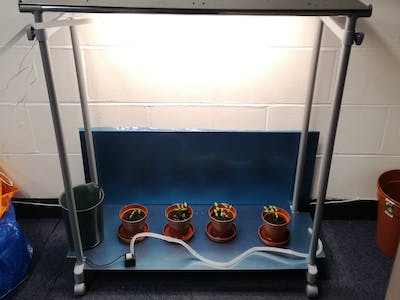 Watering, lighting and monitoring system for plant growth