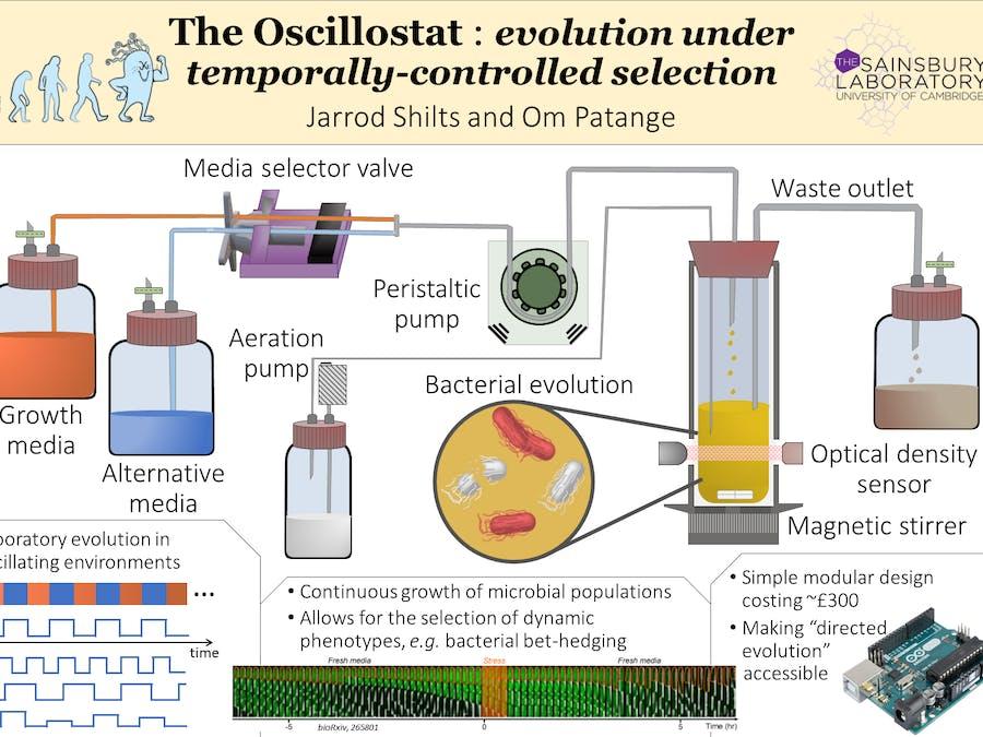 The Oscillostat