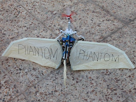 Phantom Bat