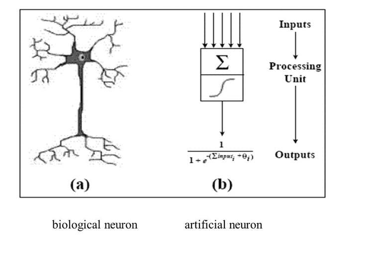 Biological neuron vs. Articial neuron. Source (Wikipedia)