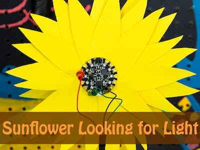 Circuit Playground Sunflower Looking for Light