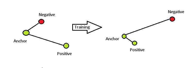 Triplet loss Training