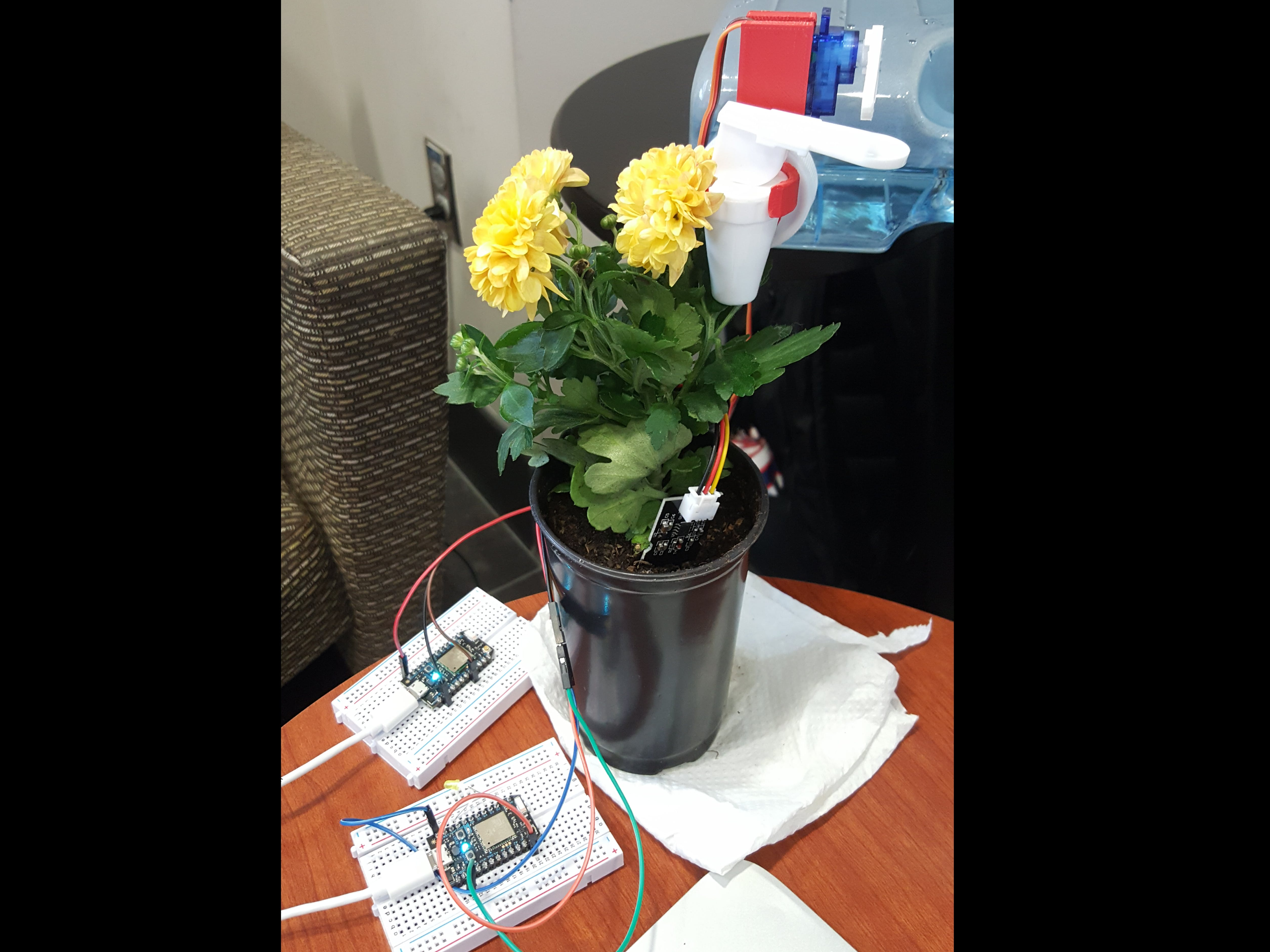 Automatic Plant Watering System Using Particle Photons