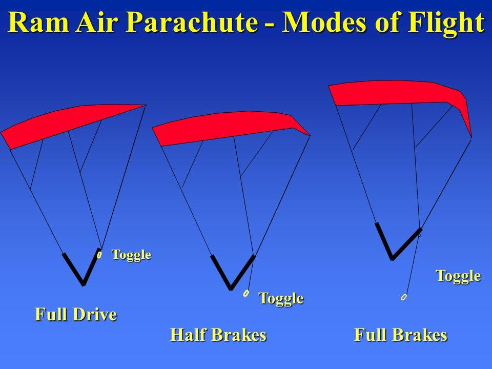 Different modes of flight for which speed was measured