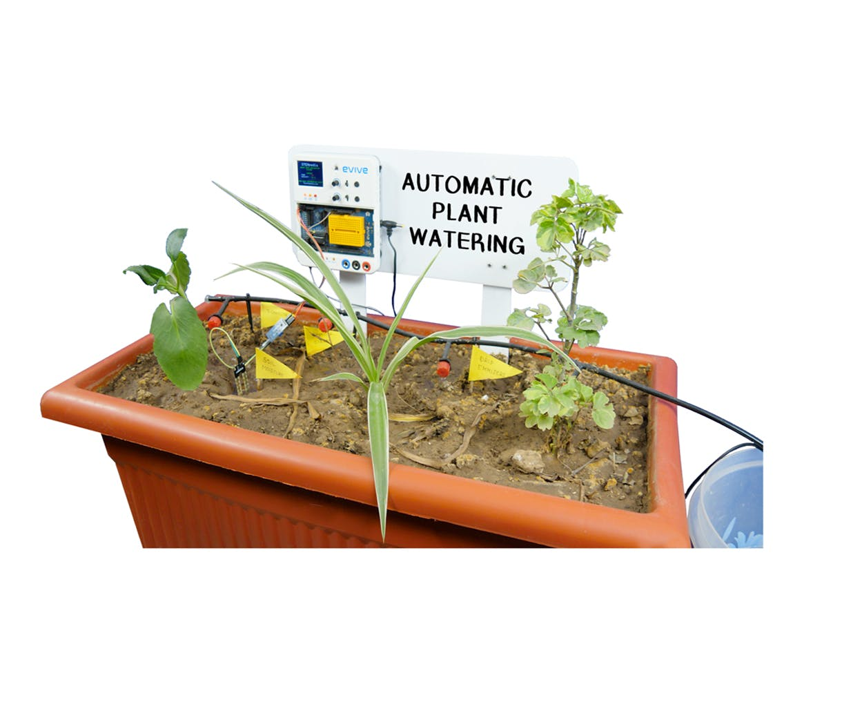 Automatic Plant Watering System Using Arduino