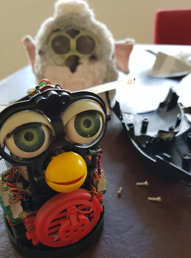 Furby ready for surgery