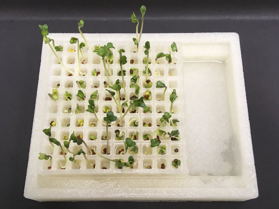 Germinate Seeds with a 3D-Printed Container