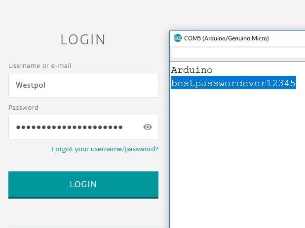 Password Typer