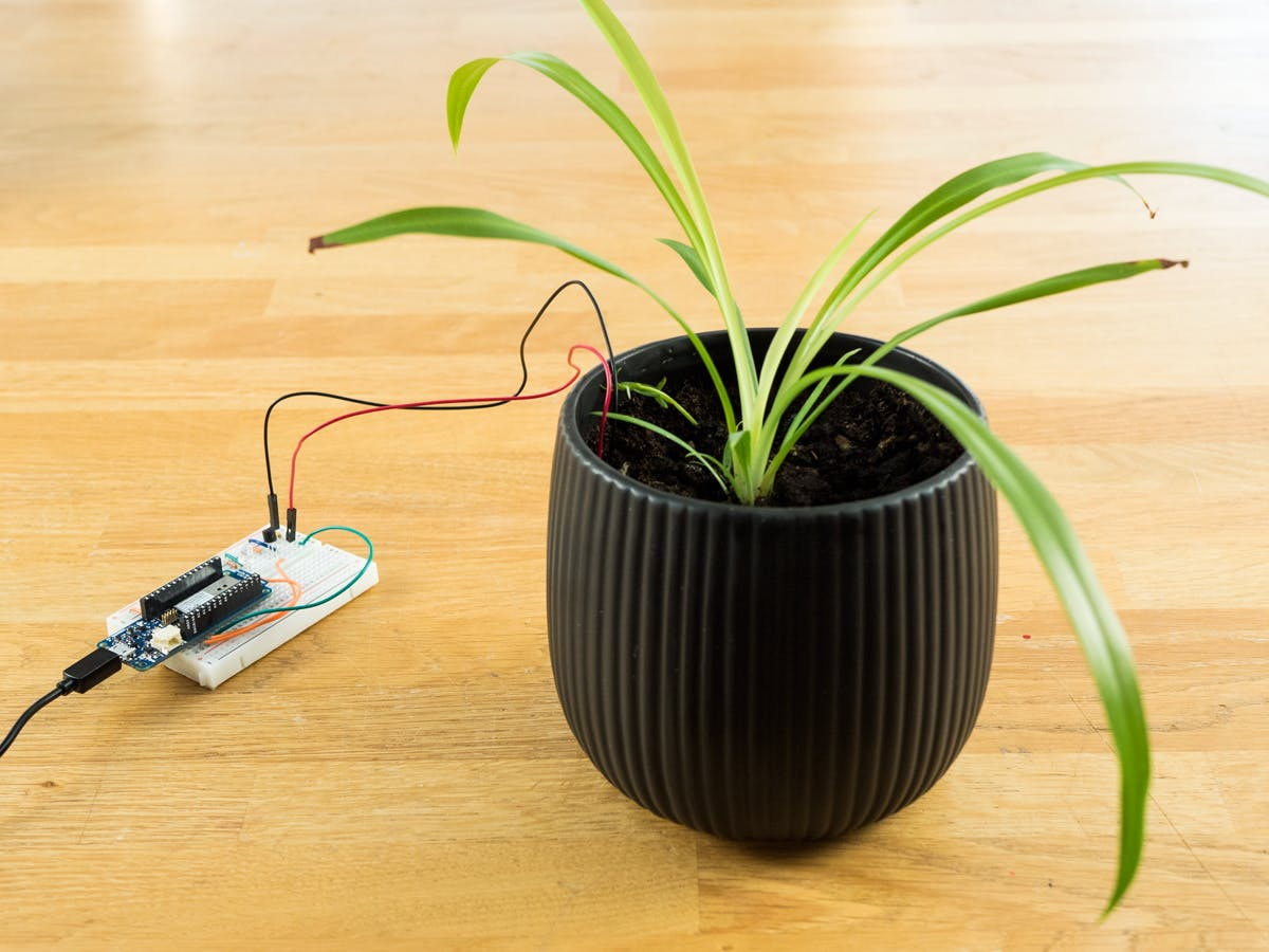 Plant Communicator with MKR WiFi 1010