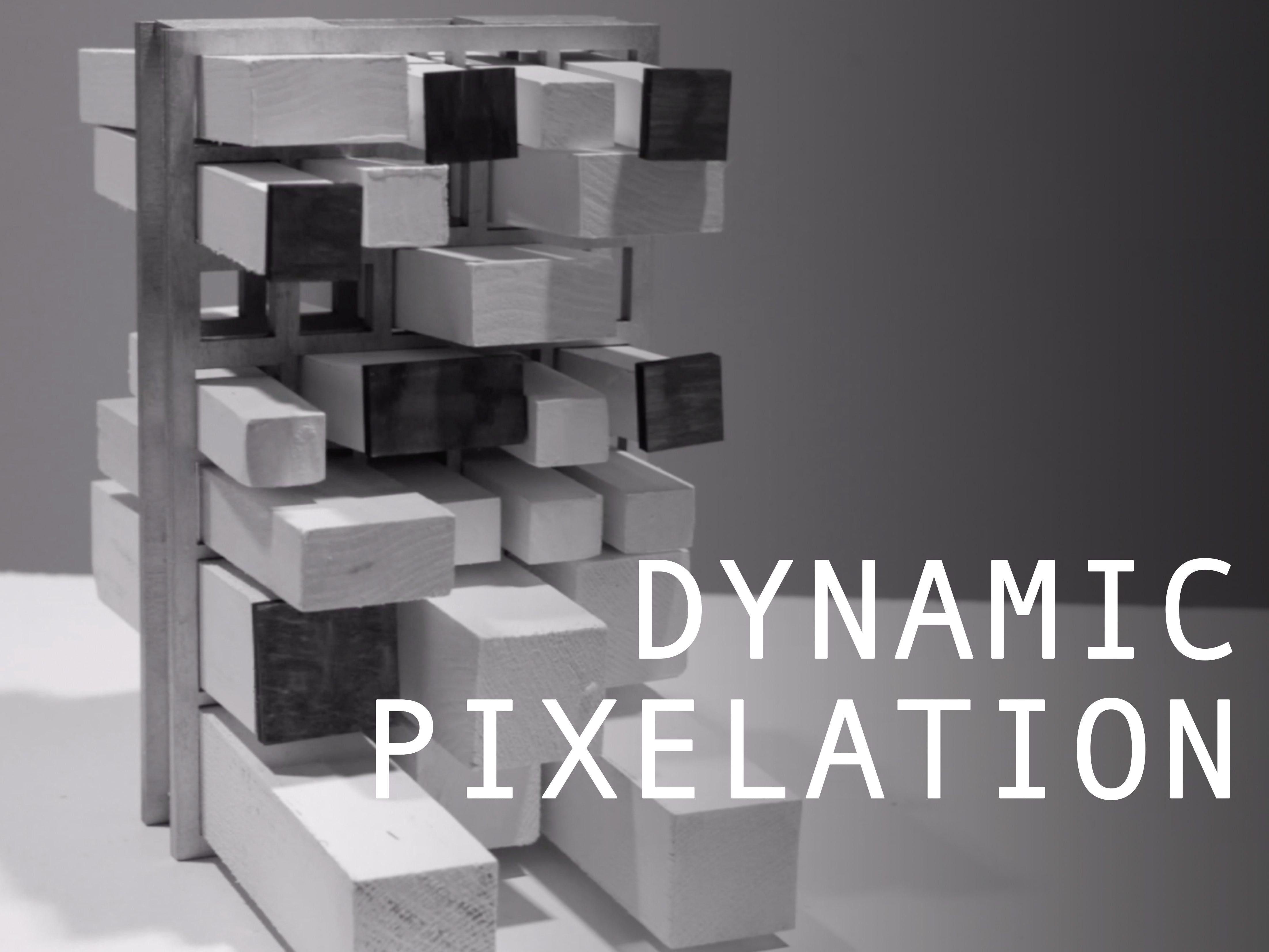 Dynamic Pixelation   Dynamic Environments