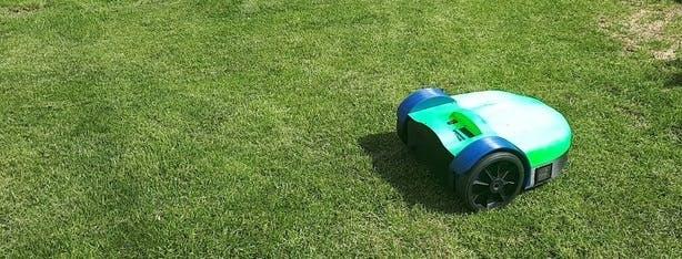 Nice Lawn!! :)