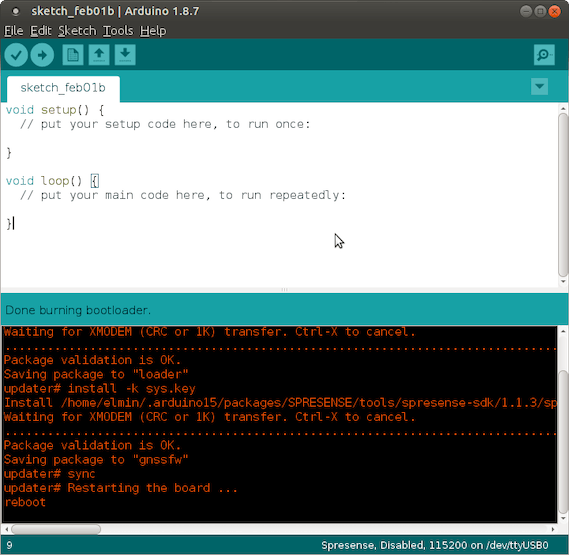 Screenshot: Burn bootloader