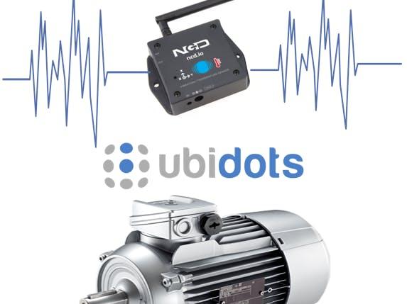Mechanical Vibration Analysis of Induction Motors