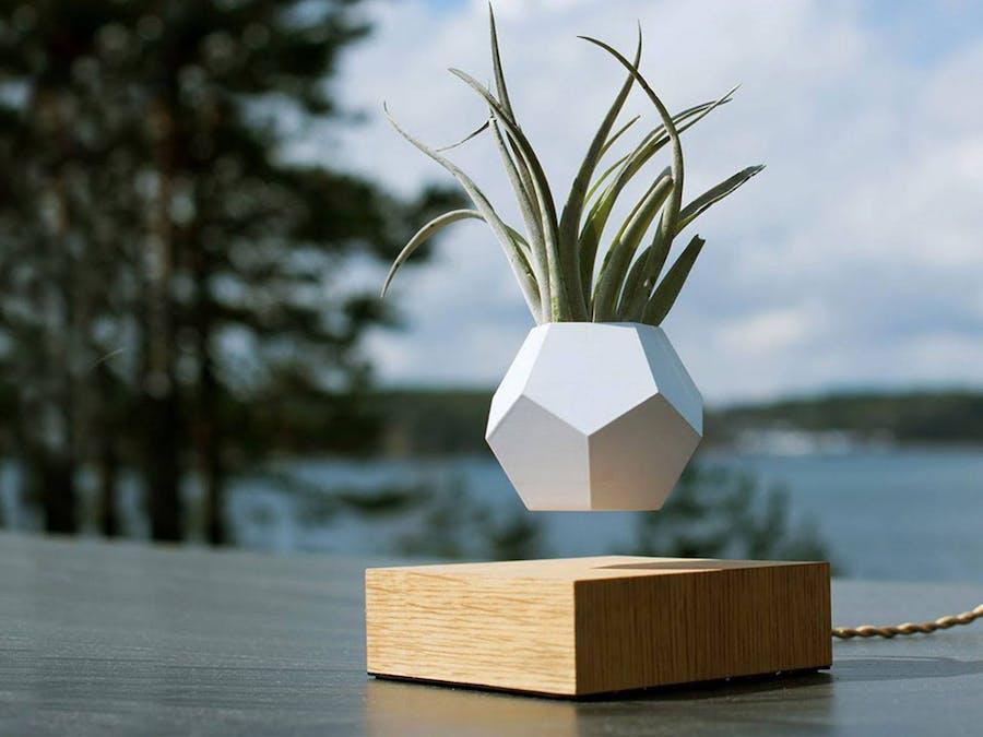 DIY Levitating Plant! - Hackster.io