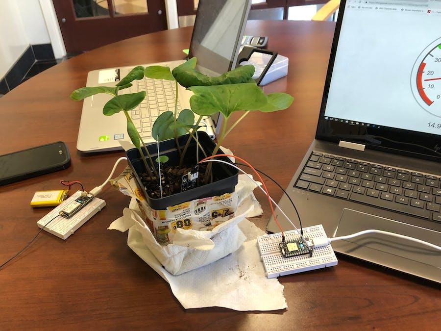 Plant Monitor