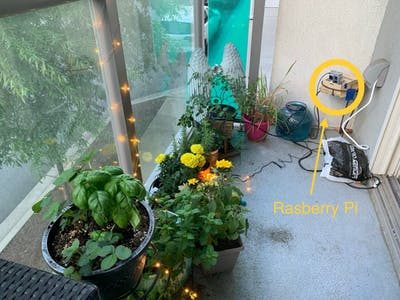 Community IoT Garden Using Raspberry Pi and Telegram Bot