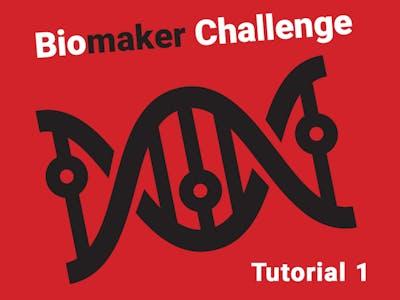 Biomaker Tutorial 1: Getting started