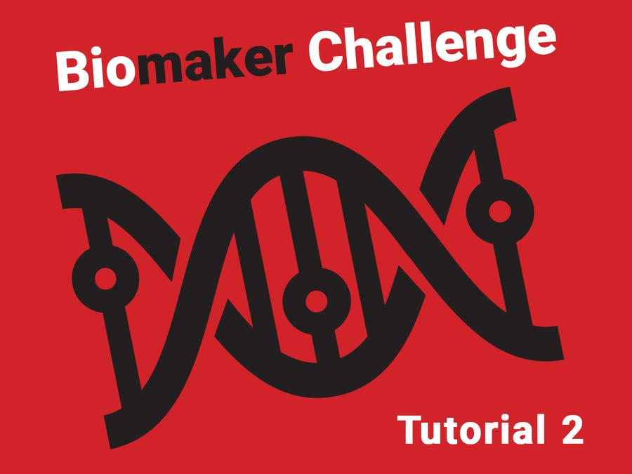 Biomaker Tutorial 2: Handling Simple Input/Output Devices