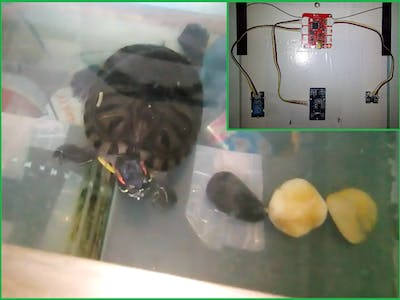 Aquarium Monitoring with AWS-Seeed-Soracom