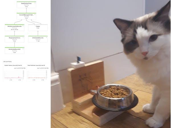 IoT Cat Feeder Streaming Data on GCP