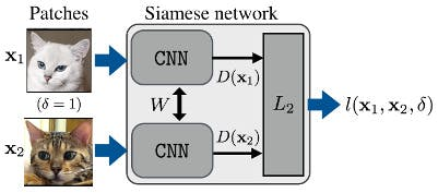 How the Siamese network works