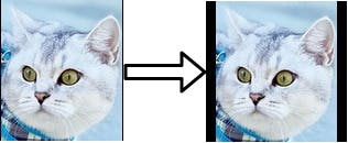 Insert padding to the cat face to ensure a 1:1 ratio