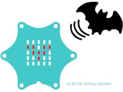 Fledermaus Detektor