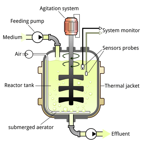 General structure of a continuous stirred-tank type bioreactor