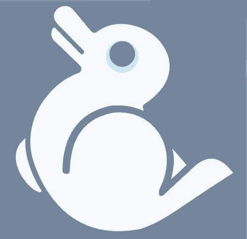 Noah s duckrabbit