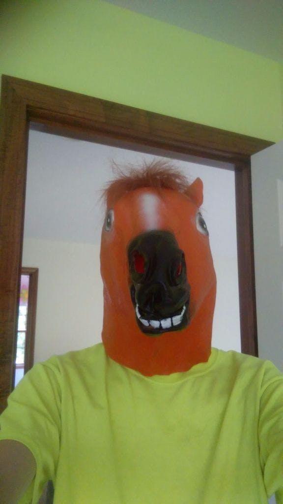 Animatronic Horse Mask