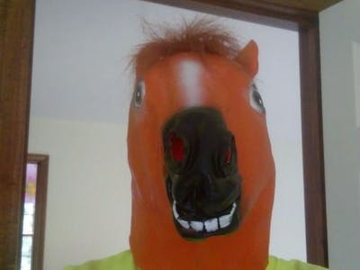 Animatronic Horse Mask