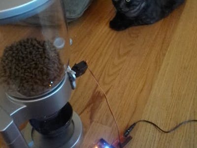 Texting Automatic Cat Feeder Internet-O-Tron