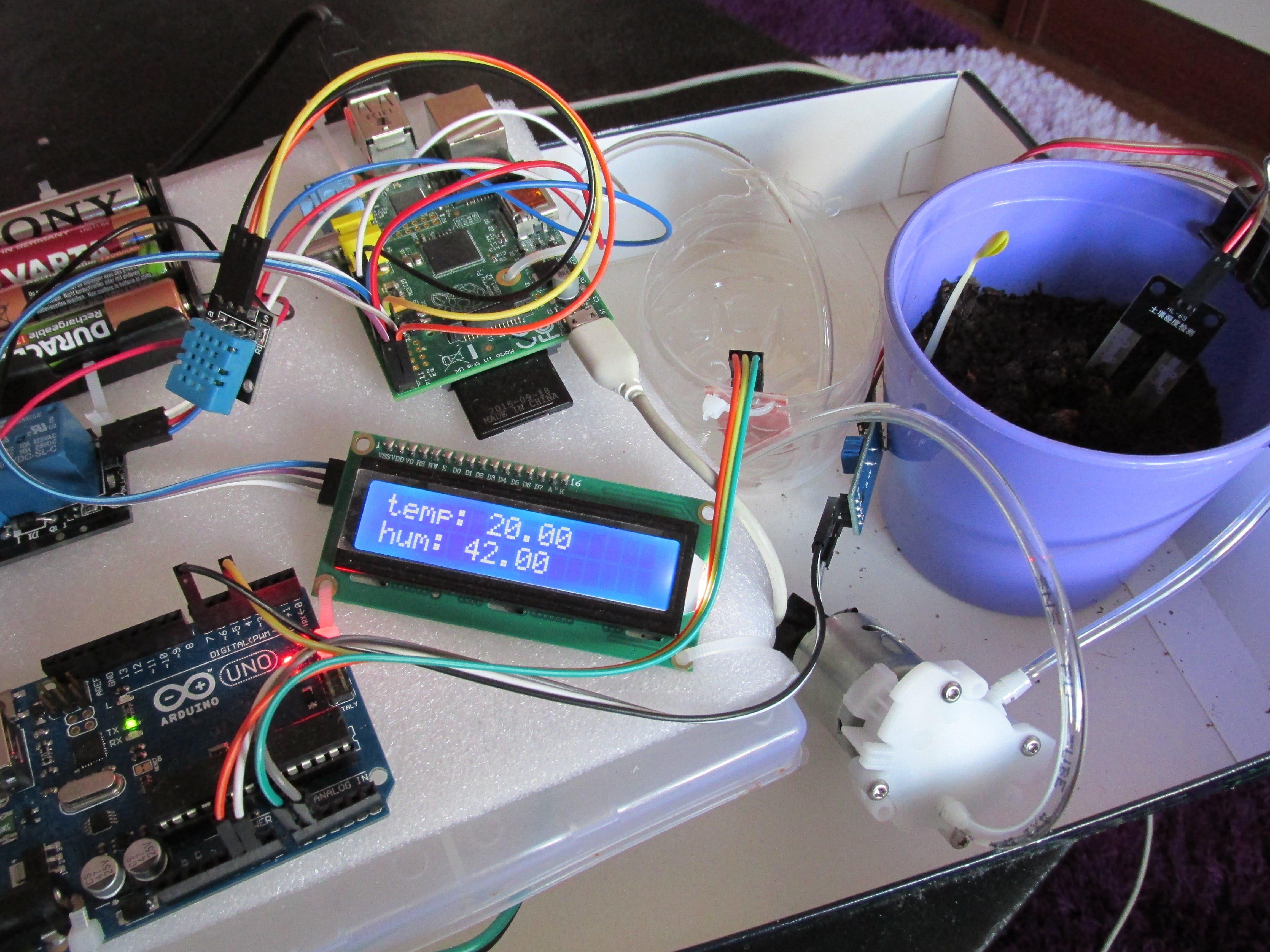 WaterPi: Houseplant Remote Watering and Monitoring System