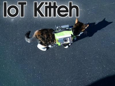 IoT Kitteh