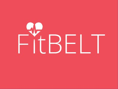 FITBELT a fitness tracker for your pet