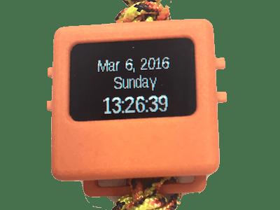 Basic O Watch Program