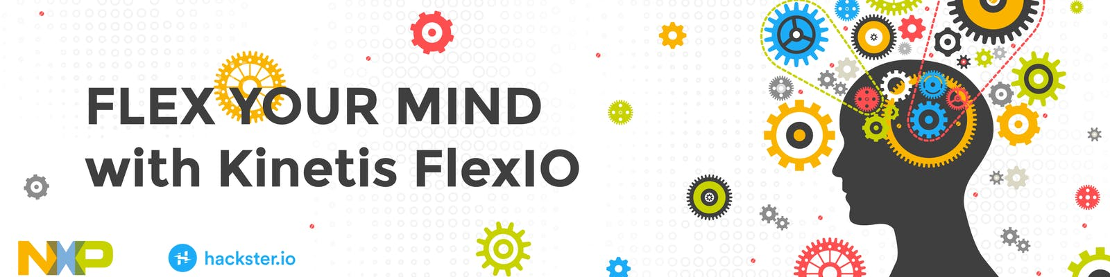 Flex Your Mind with Kinetis FlexIO