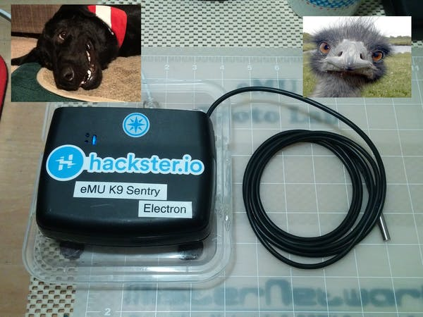eMU K9 Mobile Sentry - Hackster io