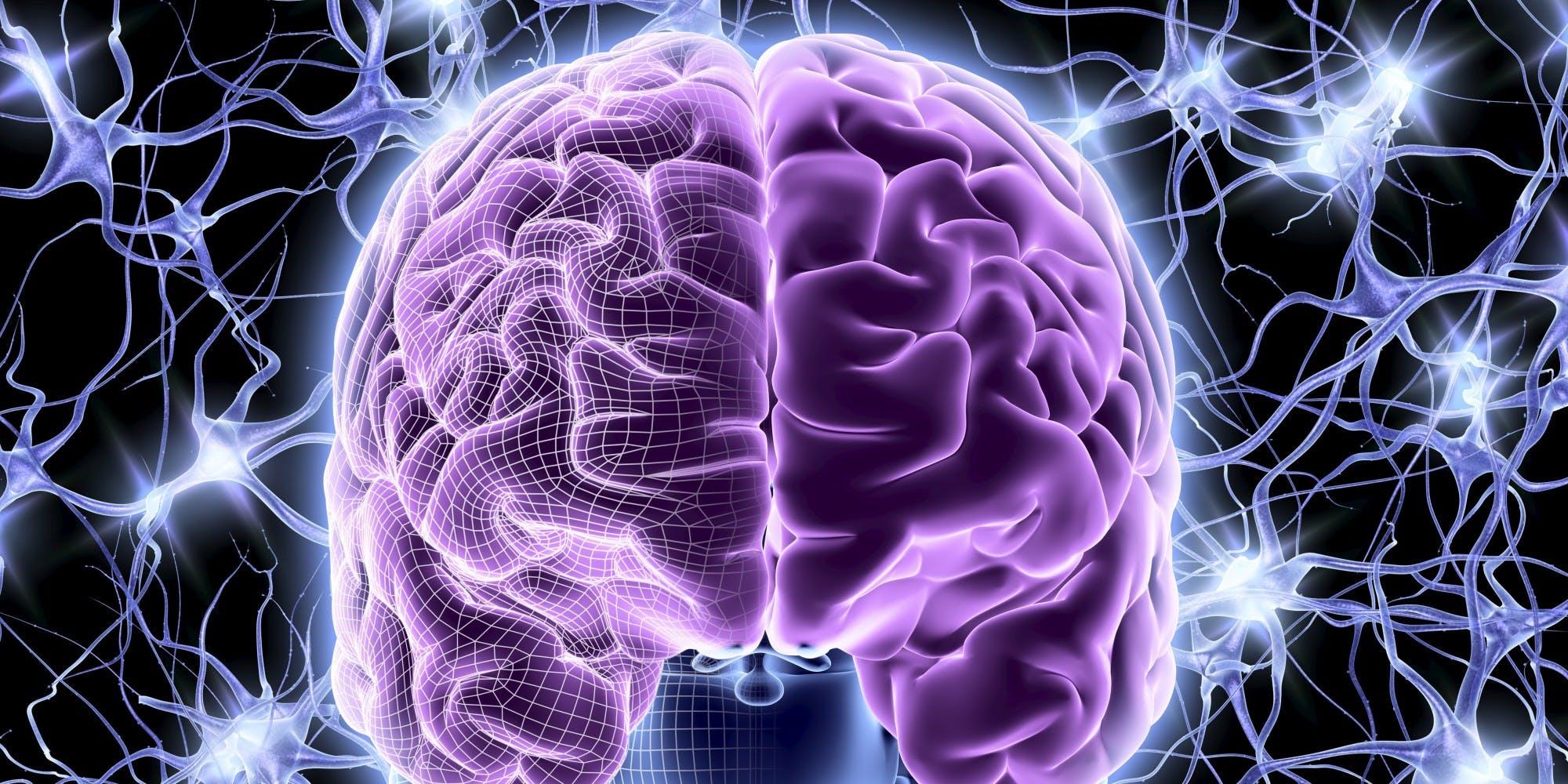 The 420% IQ Booster: A deep brain stimulation (DBS) hack