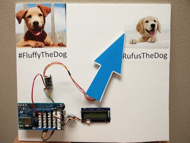 Twitter Dogs 2: Electric Woofaloo
