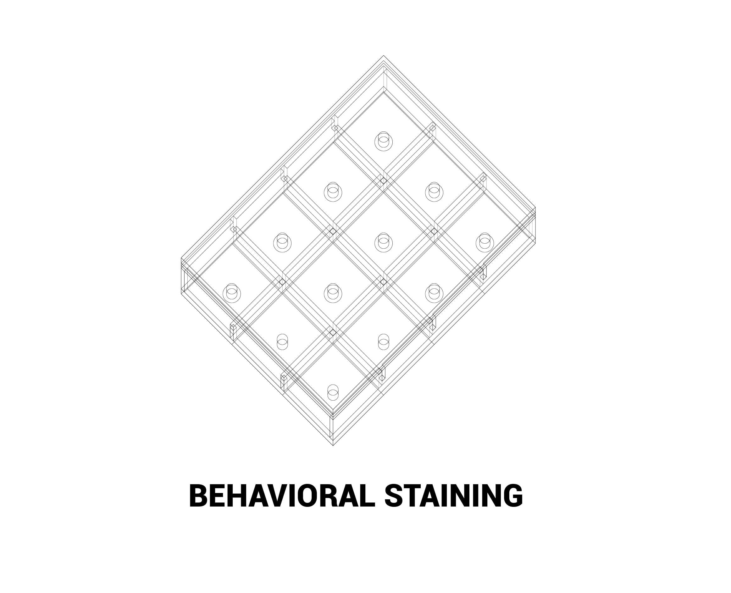 Behavior Staining