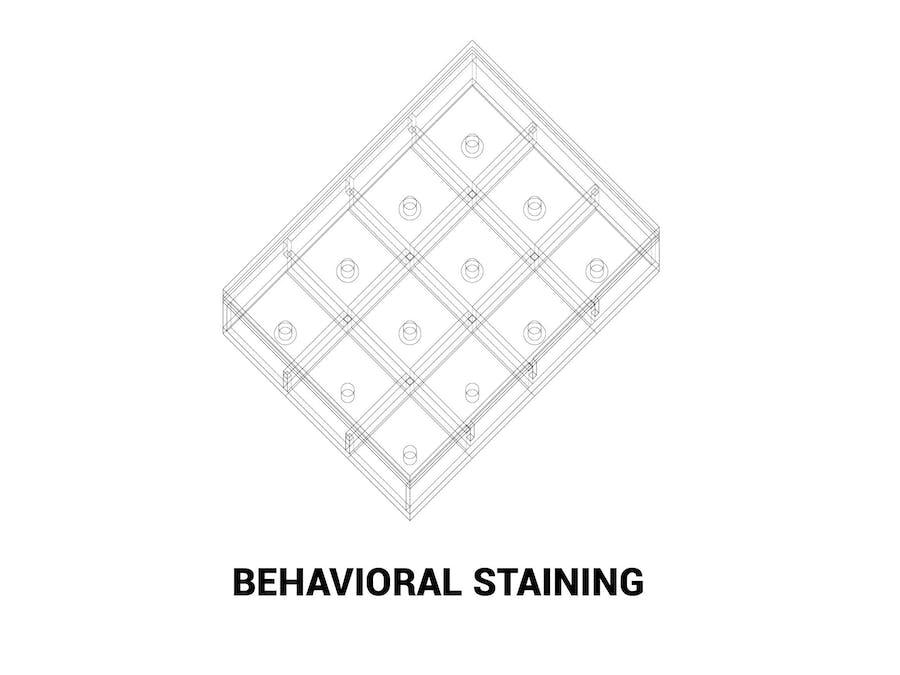 Behavior Staining