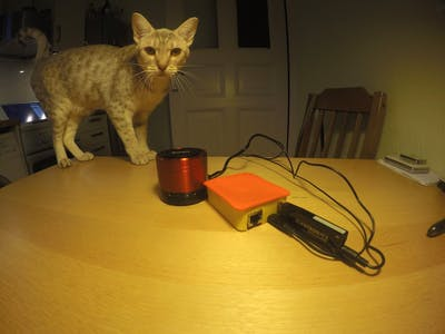 Smart Cat Attractor